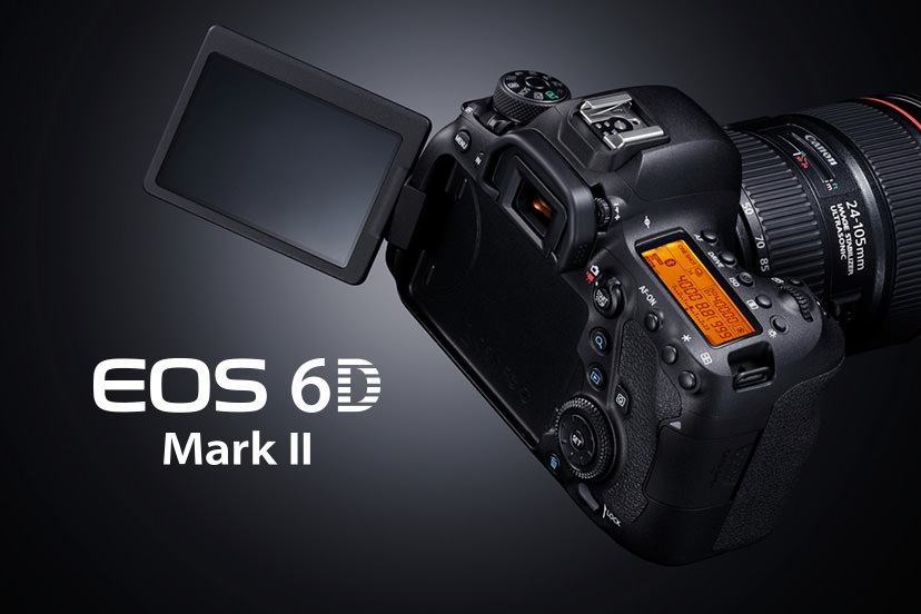 Professional Quality You Can Afford: Canon 6D Mark II